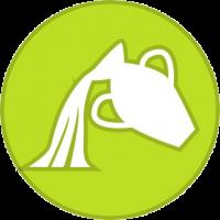 Horoscope Verseau - astrofil.fr